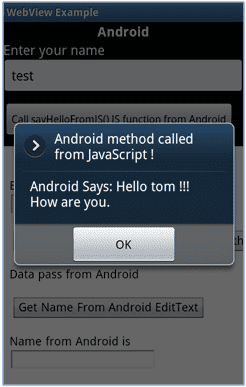 Figure 8: JavaScript to Android Method Call