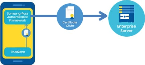 See A comprehensive view of the authentication certificates for a detailed explanation of the certificate involved in this step.