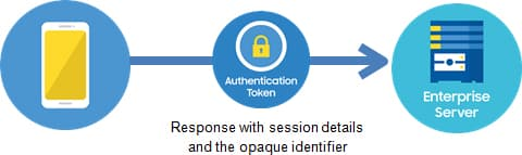 The device, in turn, sends the signed authentication token, along with certain session details, to the enterprise partner's server.