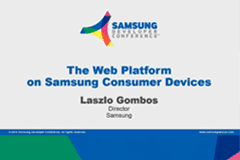 SDC 2014 | The Web Platform on Samsung Consumer Devices Nov, 2014